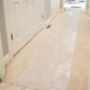 Carpet Shield 50'
